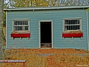 10-00-foreclosed